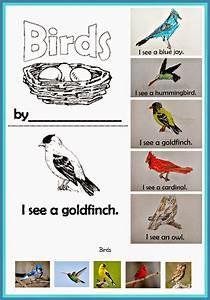 Kindergarten  Holding Hands And Sticking Together  Birds