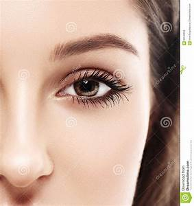 Beautiful Woman Eyes And Nose  Half Face  Studio On White Background Stock Photo