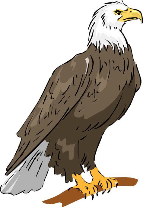 Bald Eagle Clip Free Eagle Clipart
