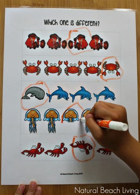the best animals preschool activities and printables 650 | sea animals 2 736x1024