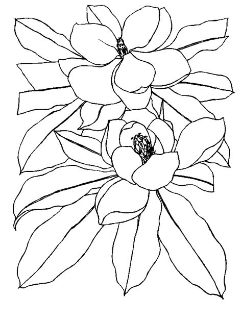 coloring pages flowers animated images gifs pictures