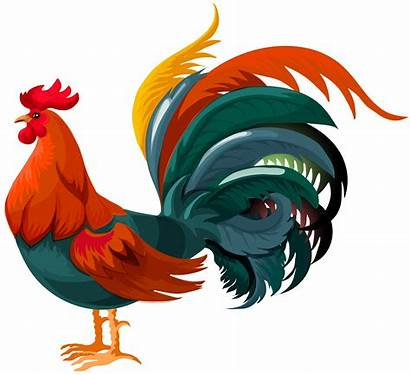 Rooster Transparent Clipart Clip Chicken Cursillo Background