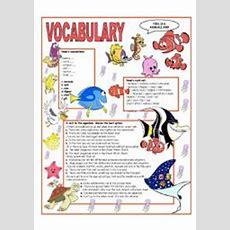Amphibians & Reptiles  Pictionary  Esl Worksheet By Oppilif