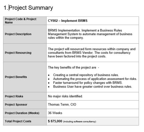 project summary template project template free project management templates