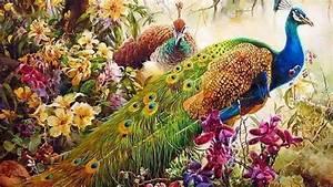 Peacock, Art, Design, 55, Hd, Wallpapers, Hd, Wallpapers