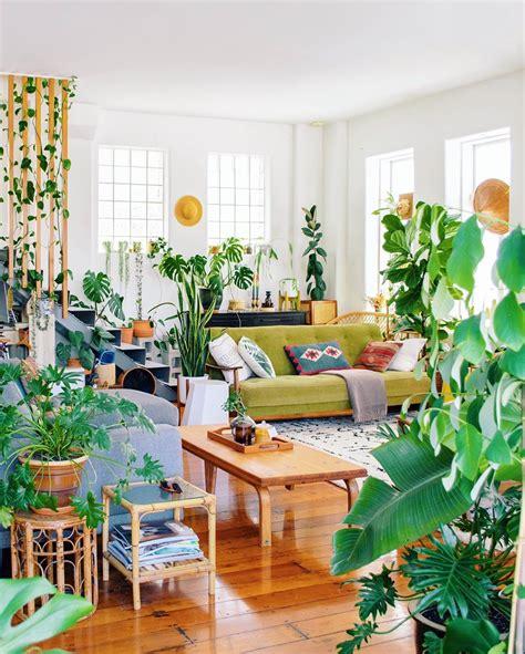 jungle living room  nz cozyplaces