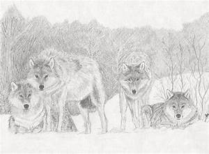 Wolf Pack Drawing by Stephen Brissette