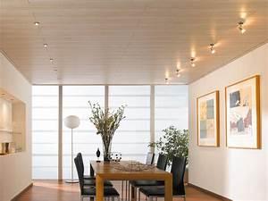 Decke Verkleiden Möglichkeiten : deckenpaneele einfach montieren so wird 39 s gemacht ~ Michelbontemps.com Haus und Dekorationen
