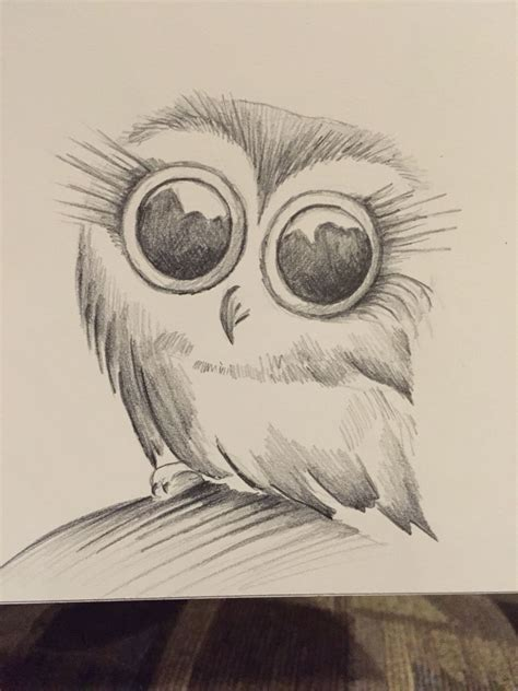 owl sketch pencil sketches   pencil