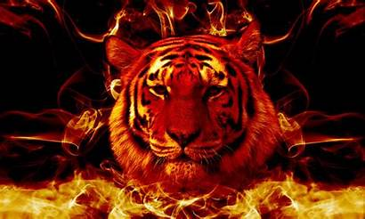Fire Tiger Wallpapers Awesome Tigers Flaming Landscape