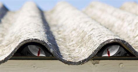 ophaling aan huis van asbest ism gemeente igean en