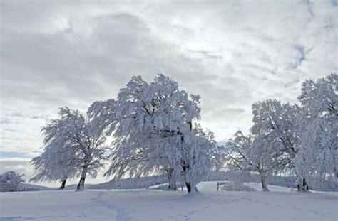 wetter  deutschland xaver hat viel schnee im gepaeck