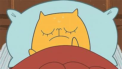 Cat Cartoon Giphy Laughing Hangover Gifs Lol