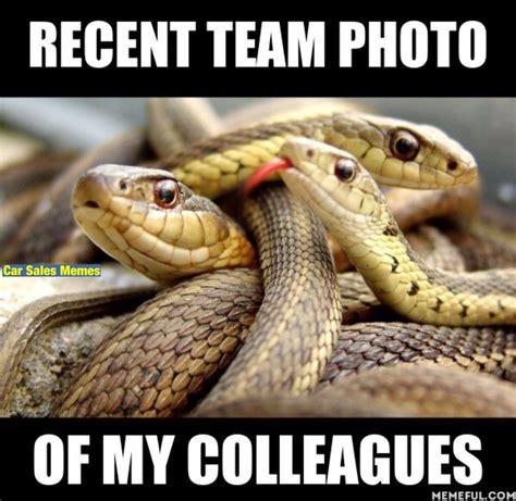 Snake Meme Car Sales Memes Carsalesmemesuk