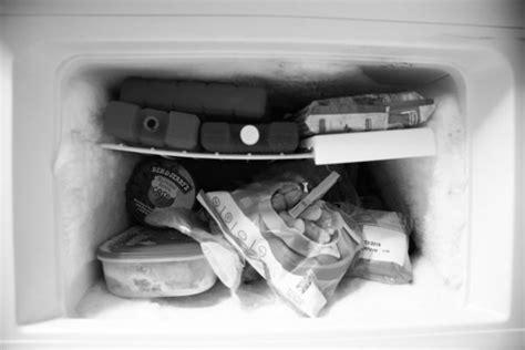 common refrigerator problems appliance san diegos  appliance repair service