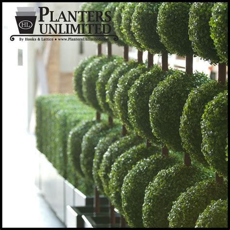 topiary trees outdoor artificial ball topiaries