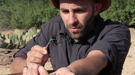 Un aventurier a testé la piqûre de la fourmi