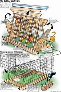 1000+ ideas about Hoop House Chickens on Pinterest Coops
