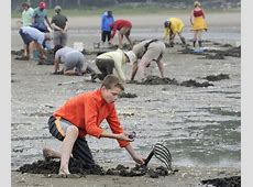 Recreational clammers have reason to smile Portland
