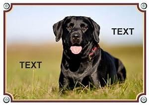 Warnschilder Selbst Gestalten : hundeschild warnschild aus metall vom eigenen hund mit hunde foto ~ Orissabook.com Haus und Dekorationen