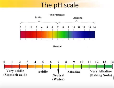 Ph Orp Diagram by What Is Ph Meter How Ph Meter Works Instrumentation