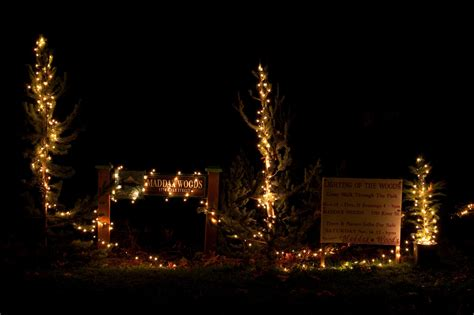 maddax woods lights labyrinth of lights fest concerts