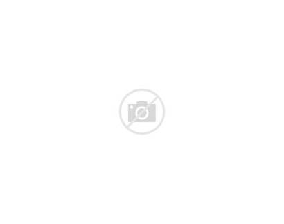 Calligraphy Modern Tutorial Lettering Guide Learn Faux