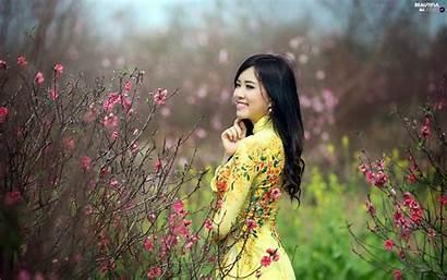 Japanese Garden Happy Wallpapers Spring Bush Flourishing