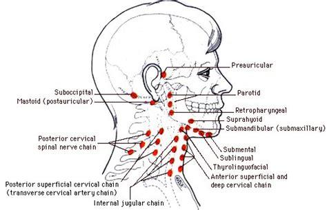 Netdoktor: Magen, darm -Infektion