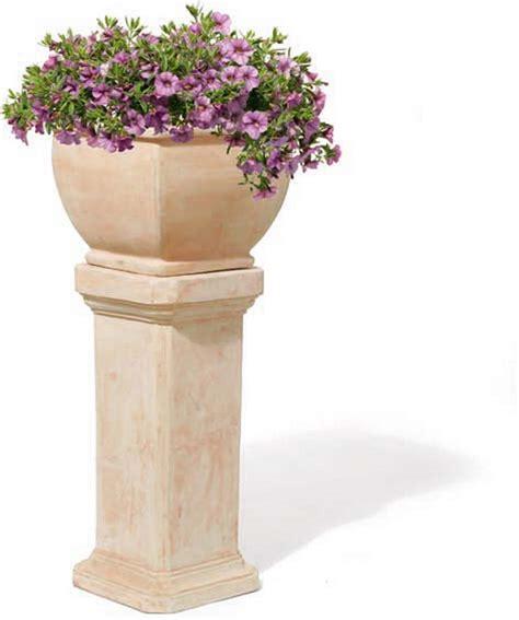 terracotta pflanzkübel bordino flacher zylinder terracotta topf 3er set rossini traditionelle terrapalme heim und