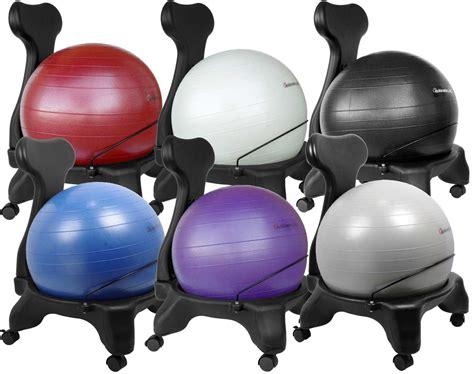 isokinetics inc adjustable back exercise ball office