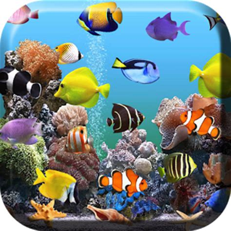 aquarium fond d 233 cran anim 233 apk t 233 l 233 charger apps gratuit