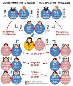 Chinese Family Tree Kinship Relationship System
