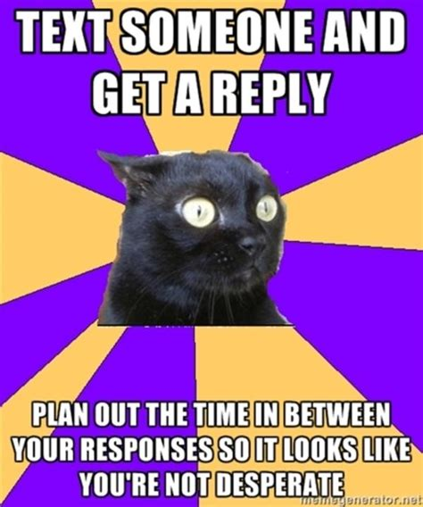 Anxiety Memes - image 221901 anxiety cat know your meme