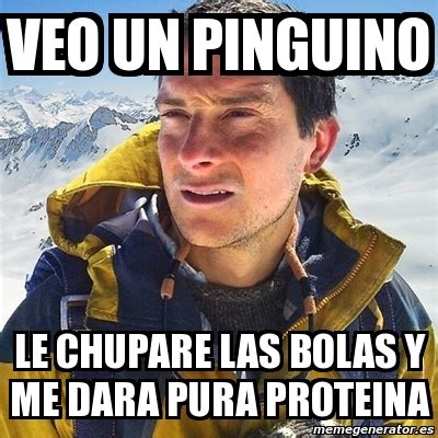 Le Me Meme Generator - meme bear grylls veo un pinguino le chupare las bolas y me dara pura proteina 8196