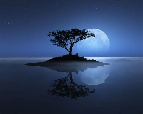 tuning  witness consciousness moonlight photography