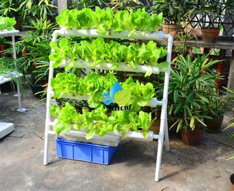 details  nft pvc hydroponic hydroponics  site
