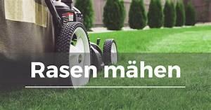 Wann Rasen Mähen : rasen m hen garten schule ~ Watch28wear.com Haus und Dekorationen