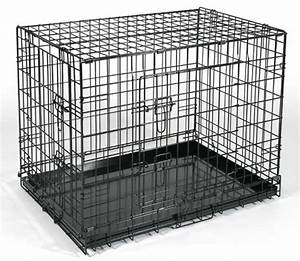 all about cages dog just another wordpresscom site With where can i buy a dog cage