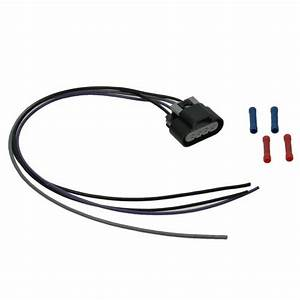 Black Wire Harness Plugs Receptacles : fuel pump wiring harness with oval connector 4 wire ~ A.2002-acura-tl-radio.info Haus und Dekorationen
