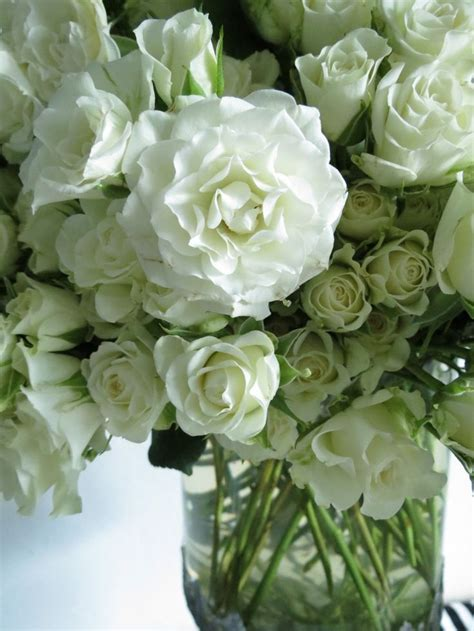 55 Best Images About ♔ White Floral Arrangements On