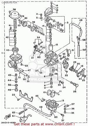 2009 Raptor 350 Engine Diagram Diagrampopular Ciboperlamenteblog It