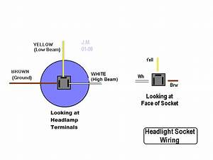 Dorman Headlight Socket Wiring Diagram