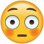 Emoji Face Flushed Icon