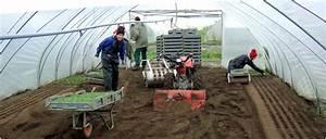 Feldsalat Setzlinge Pflanzen : feldsalat pflanzen demeter g rtnerei sannmann ~ Frokenaadalensverden.com Haus und Dekorationen