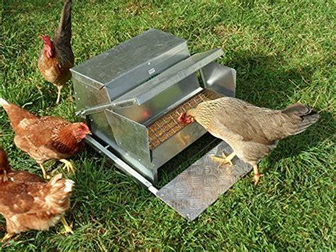 automatic chicken feeder grandpas feeder automatic chicken feeder insteading
