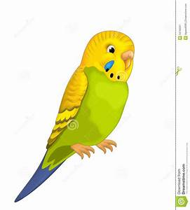 The Cartoon - Parrot - Illustration For The Children Stock ...