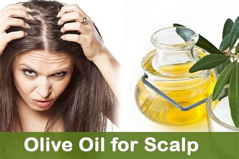 olive oil  scalp olive oil treatment  dry itchy