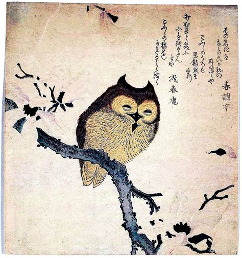 birds  pinterest birds chinese art