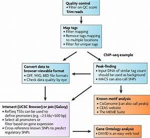 Flow Chart For Data Analysis  This Example Shows A